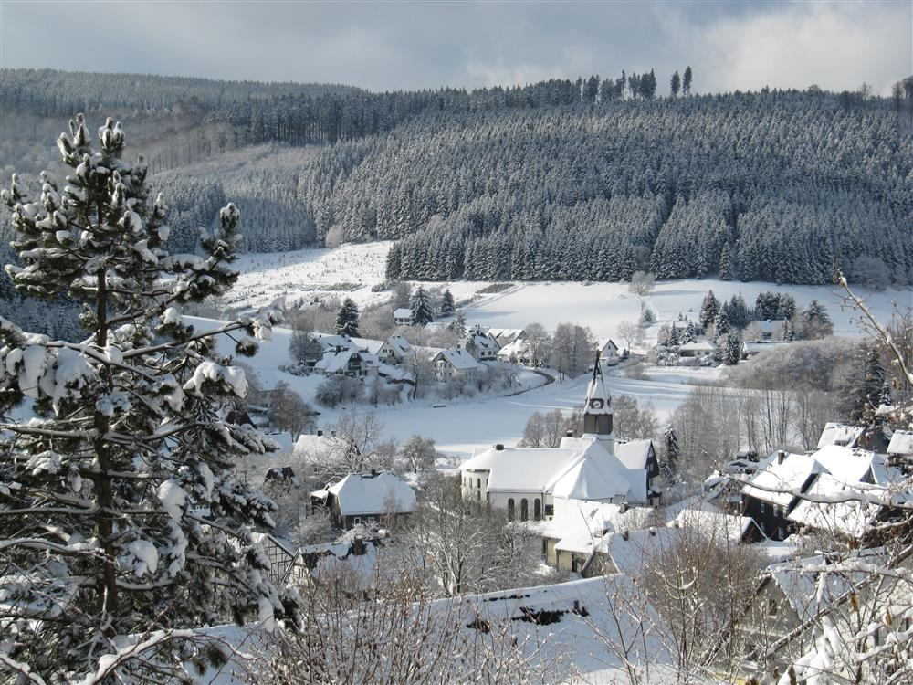 Betere Vakantiehuis Waldhaus Winterberg | Middenin de natuur aan de NL-05