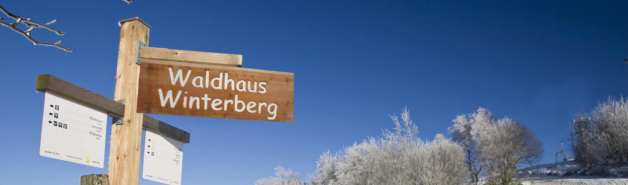 Ongekend Vakantiehuis Waldhaus Winterberg | Middenin de natuur aan de IG-12